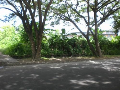 Di Jual Tanah di Bali - Jalan Raya Tantular Renon Denpasar